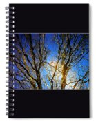Ripple Tree Spiral Notebook