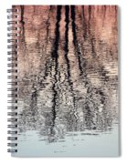 Rippled Reflection Spiral Notebook