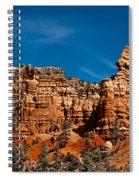 Rippled Walls Spiral Notebook