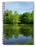 Ritter Springs Pond Spiral Notebook