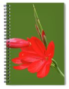 Ritzy Red Spiral Notebook