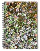 River 12 Spiral Notebook