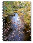 River 3 Spiral Notebook
