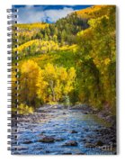 River And Aspens Spiral Notebook