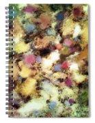 River Bed Spiral Notebook