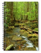 River Crossing On The Maryland Appalachian Trail Spiral Notebook