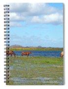 River Horses Horizon Spiral Notebook