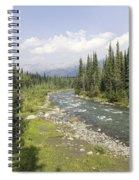 River In Denali National Park Spiral Notebook