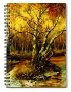 River In The Forest Spiral Notebook