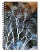 River Oak Dream Spiral Notebook