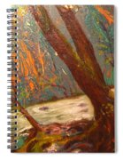 River Of Energy Spiral Notebook