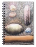 River Rock 1 Spiral Notebook