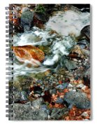River Rock Leaves Spiral Notebook