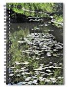 River Shallows Spiral Notebook