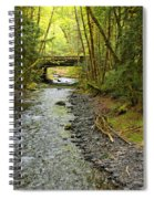 River Through The Rainforest Spiral Notebook