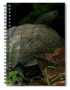 River Turtle 2 Spiral Notebook
