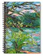 Riverview Spring Stage One Spiral Notebook