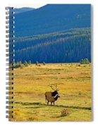 Rmnp Plains In Autumn Spiral Notebook