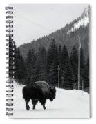Road Block Spiral Notebook