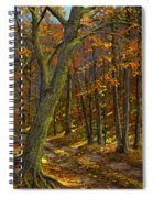 Road In The Woods Spiral Notebook