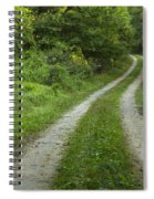 Road In Woods 1 D Spiral Notebook