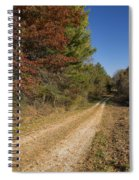 Road In Woods Autumn 5 Spiral Notebook
