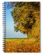 Road Of Leaves Spiral Notebook
