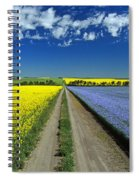 Road Through Flowering Flax And Canola Spiral Notebook