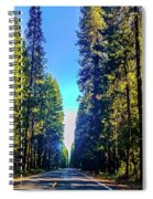 Road Through The Forest Spiral Notebook