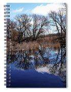 Roadside Pond I Spiral Notebook