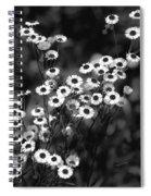 Roadside Wildflowers Spiral Notebook