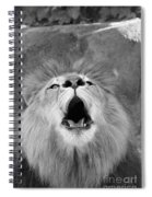 Roar  Black And White Spiral Notebook