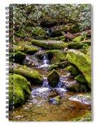 Roaring Fork 2 Spiral Notebook