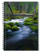 Roaring River Spiral Notebook
