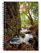 Roaring Spring Spiral Notebook
