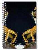 Robber Fly - Alien Visitors Spiral Notebook