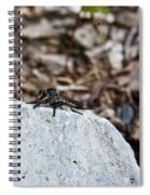 Robber Fly Sitting Spiral Notebook