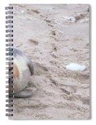 Robby Spiral Notebook