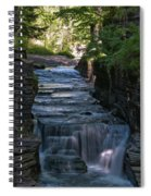 Robert Treman 0512 Spiral Notebook