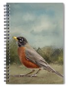 Robin Abstract Background Spiral Notebook