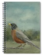 Robin Abstract Background With Texture Spiral Notebook