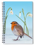 Robin And Cold Snowdrops Spiral Notebook