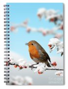 Robin And Cotoneaster With Snow Spiral Notebook