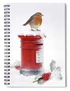 Robin And Postbox Spiral Notebook