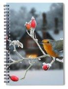 Robin And Rose Hips Spiral Notebook