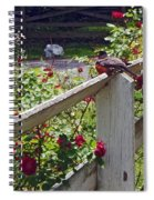 Robin And Roses Spiral Notebook