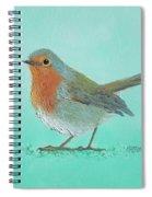 Robin Bird Painting Spiral Notebook
