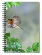 Robin Flying To Nest Spiral Notebook