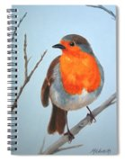 Robin In The Tree Spiral Notebook