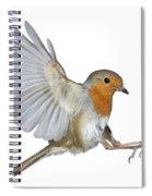 Robin Landing Spiral Notebook